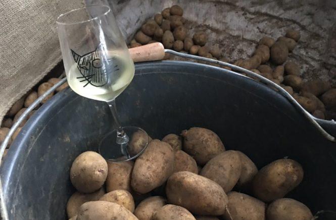 Wein, Weib, Wanderung und.... Kartoffeln
